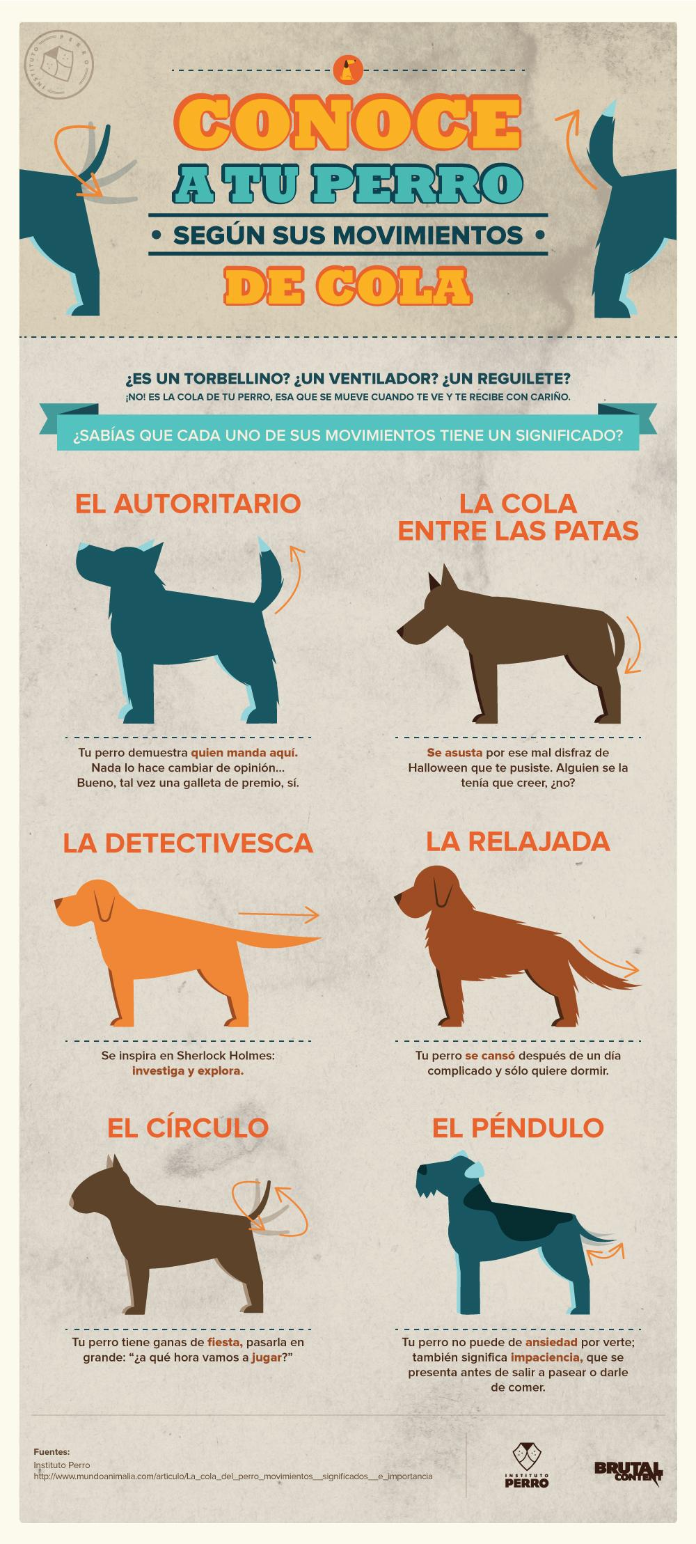 movimiento-cola-perros